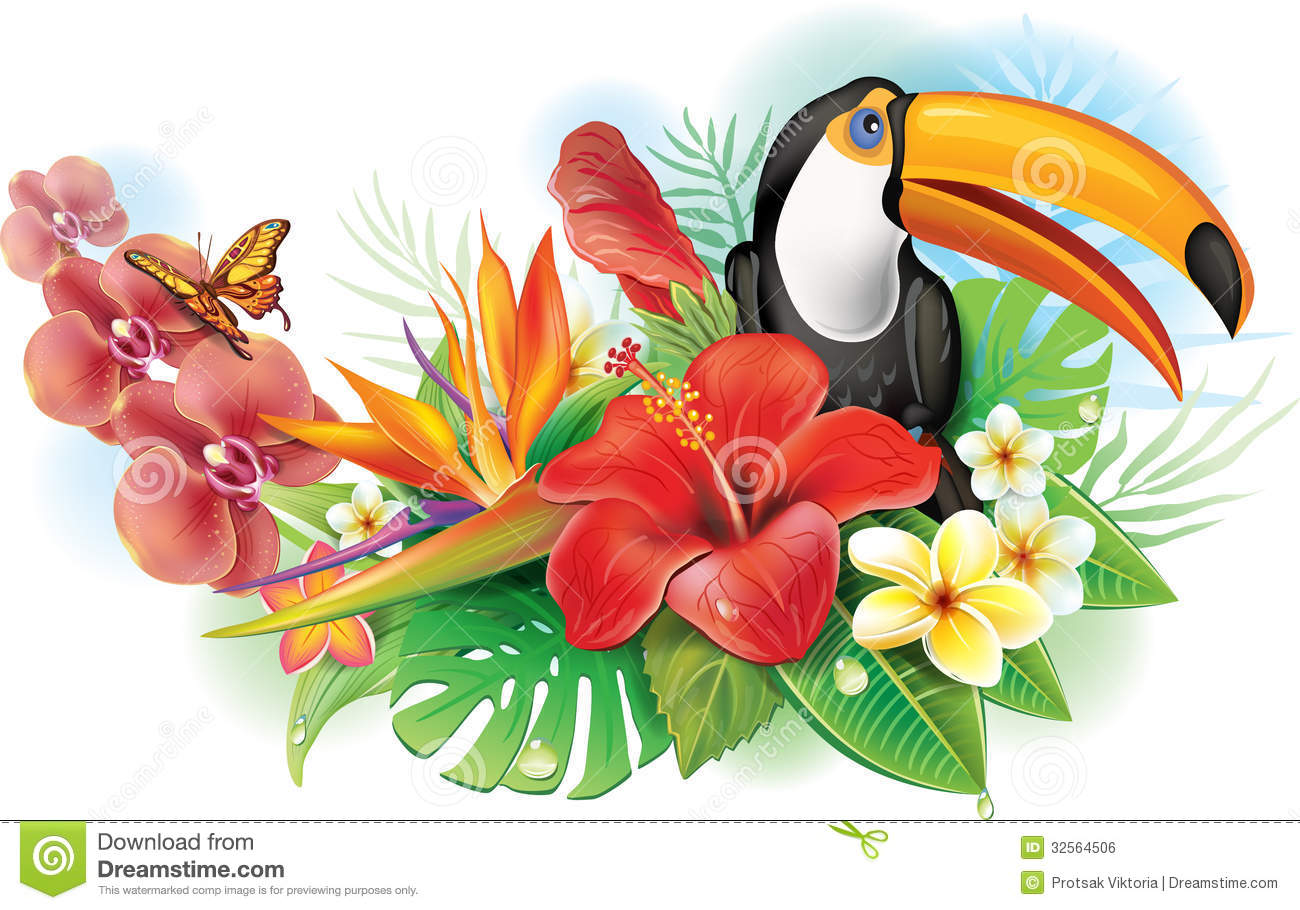 Free pictures of exotic flowers clipart library Red Hibiscus, Toucan And Tropical Flowers Royalty Free Stock Image ... clipart library