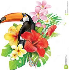 Free pictures of exotic flowers picture freeuse library 17 Best images about Drawings of tropical flowers on Pinterest ... picture freeuse library