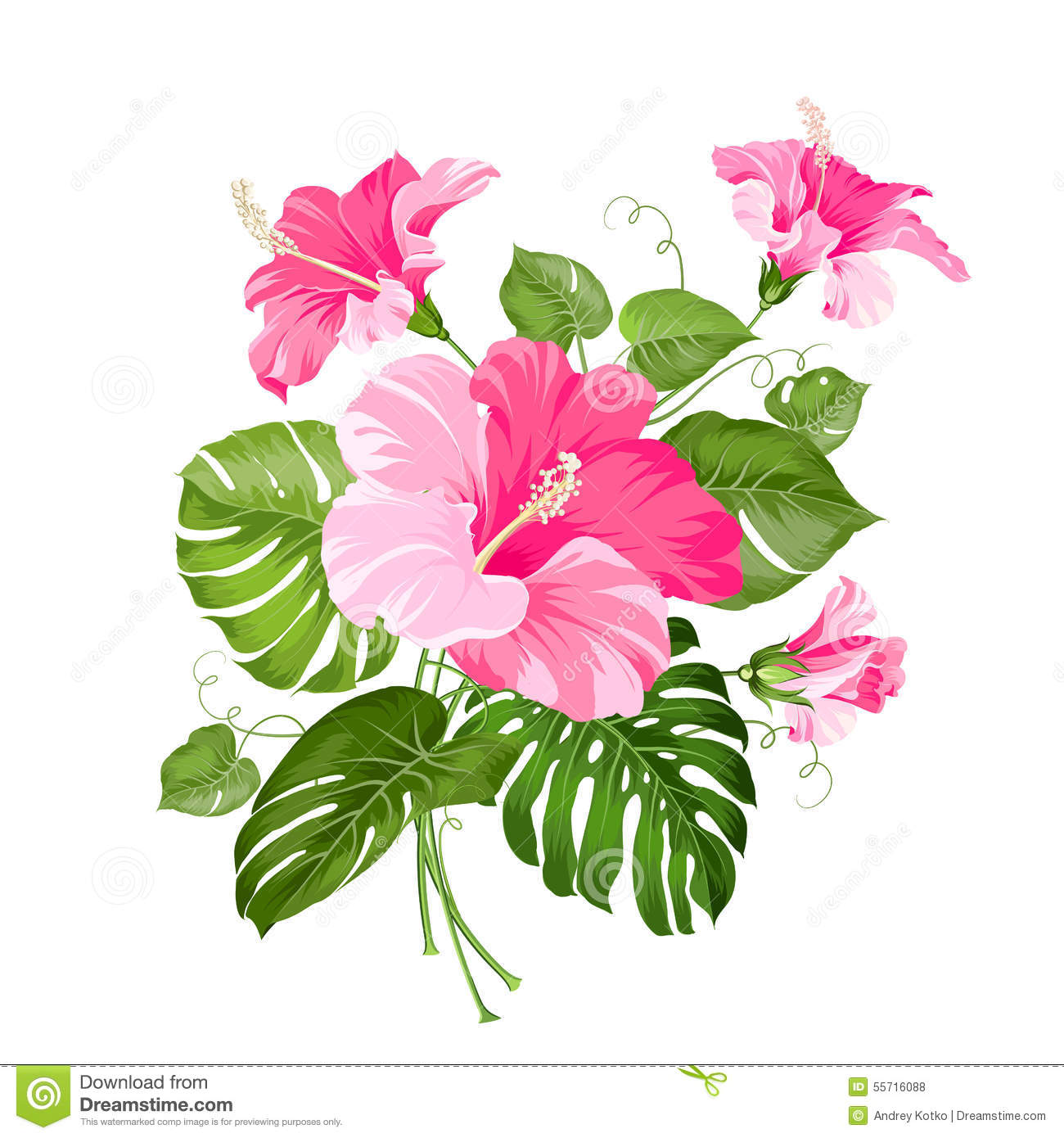 Free pictures of exotic flowers banner free Exotic Vintage Card With Tropical Flowers, Parrots Stock ... banner free