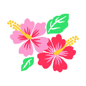 Free pictures of hibiscus flowers svg transparent stock Hibiscus clipart free - ClipartFest svg transparent stock
