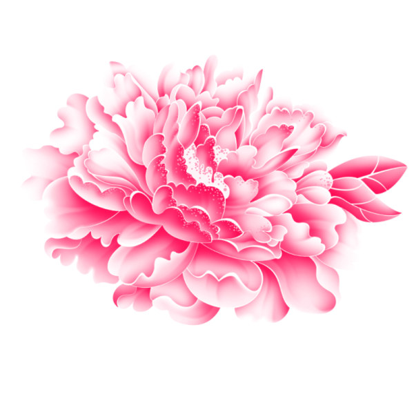 Free pictures of pink flowers vector black and white download Realistic pink flower psd graphics - Flower PSD File free download vector black and white download