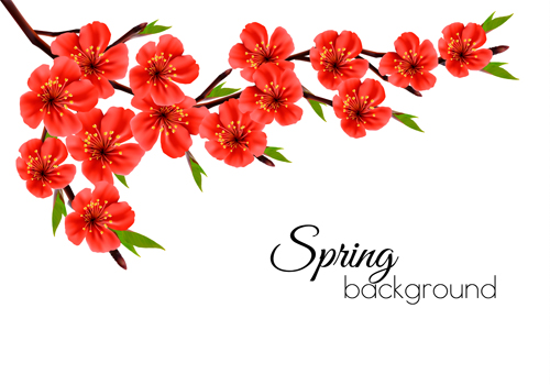 Free pictures of red flowers clipart stock Beautiful red flowers spring vectors background - Vector ... clipart stock