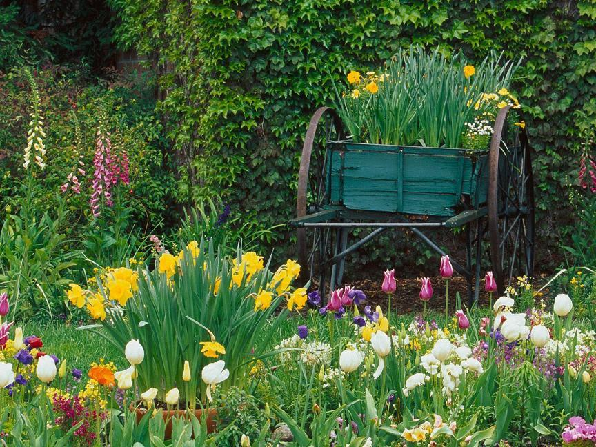 Free pictures of spring flowers picture free Spring Flower Garden @ Free Desktop Backgrounds - Pixdaus picture free