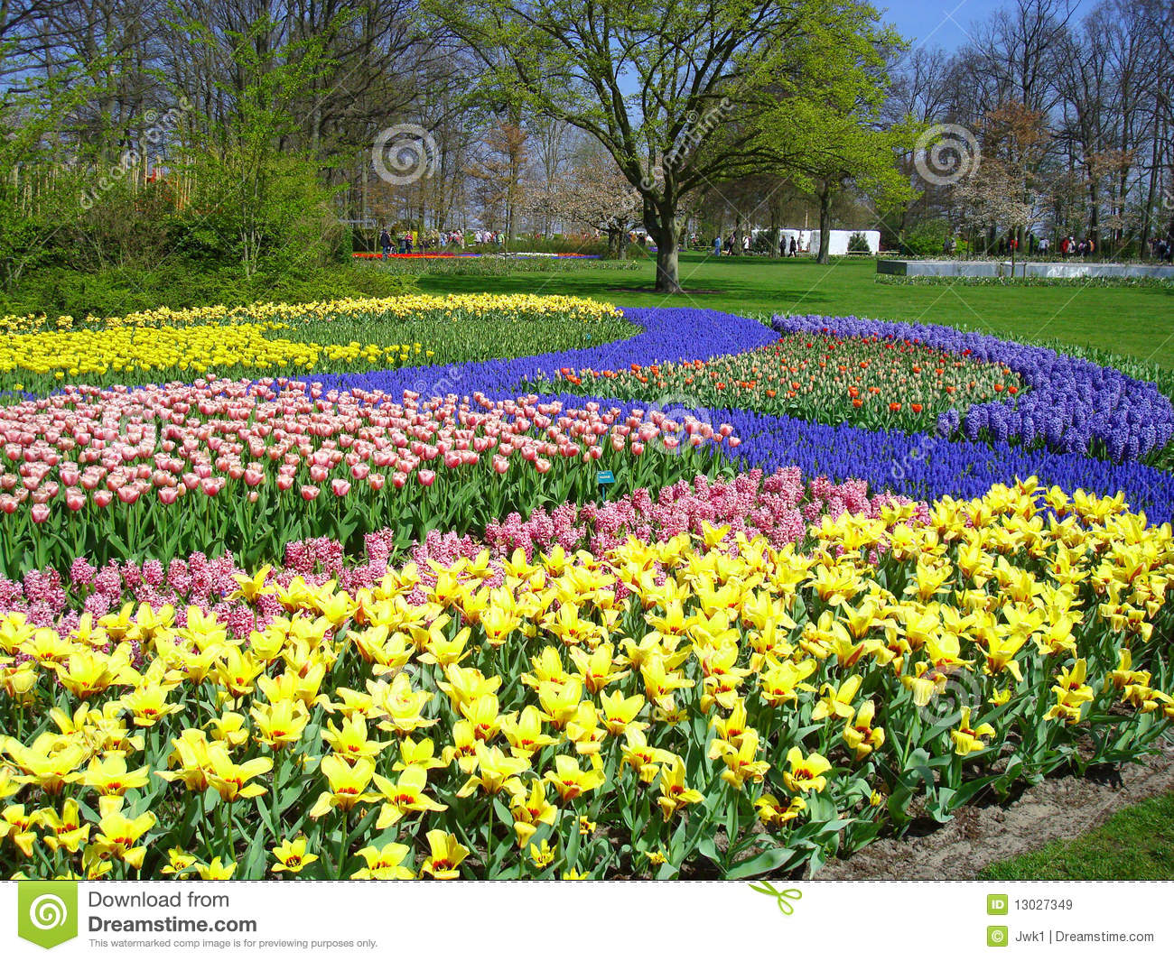 Free pictures of spring flowers banner library library Field Of Colorful Spring Flowers Royalty Free Stock Images - Image ... banner library library
