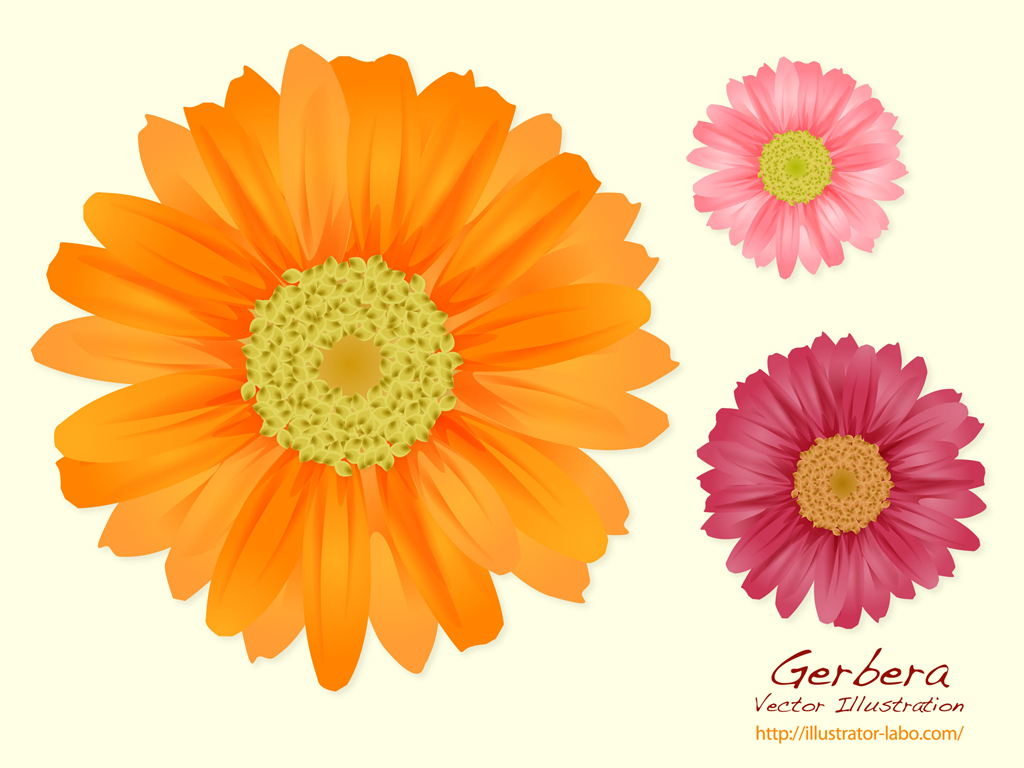 Free pictures of summer flowers image transparent stock Summer Flowers Free Vector / 4Vector image transparent stock