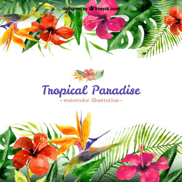 Free pictures of tropical flowers graphic free library Tropical Flower Vectors, Photos and PSD files | Free Download graphic free library