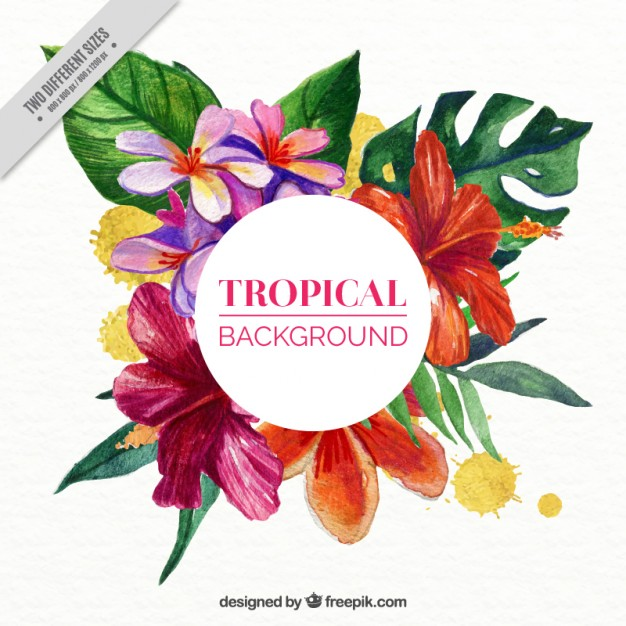 Free pictures of tropical flowers clipart transparent download Tropical flowers background in watercolor effect Vector | Free ... clipart transparent download