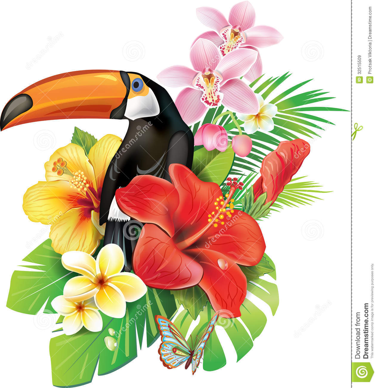 Free pictures of tropical flowers transparent download Tropical flowers pictures free - ClipartFest transparent download