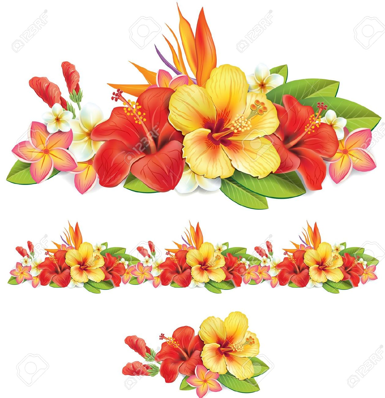 Free pictures of tropical flowers banner free download Garland Of Of Tropical Flowers Royalty Free Cliparts, Vectors, And ... banner free download