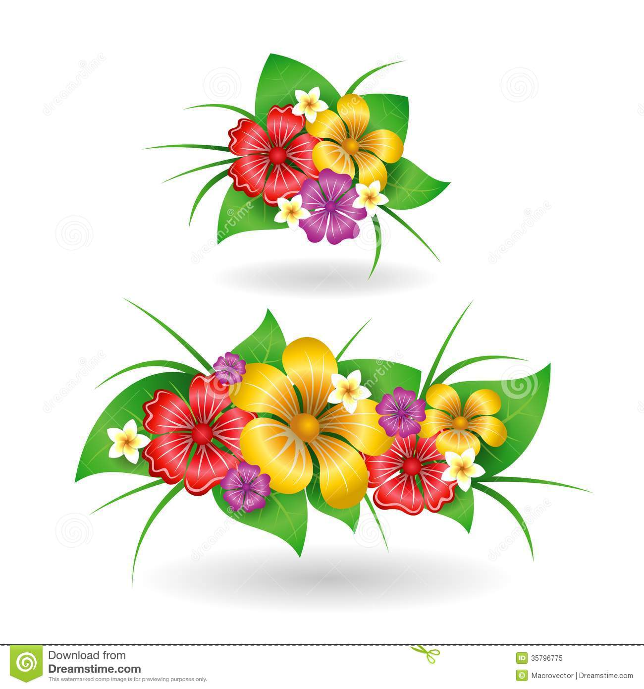 Free pictures of tropical flowers clip art black and white download Tropical flowers pictures free - ClipartFest clip art black and white download