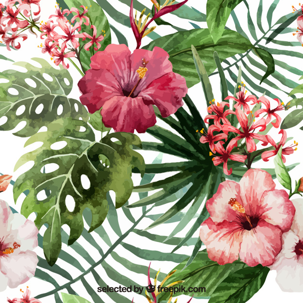 Free pictures of tropical flowers clipart black and white stock Tropical Flower Vectors, Photos and PSD files | Free Download clipart black and white stock
