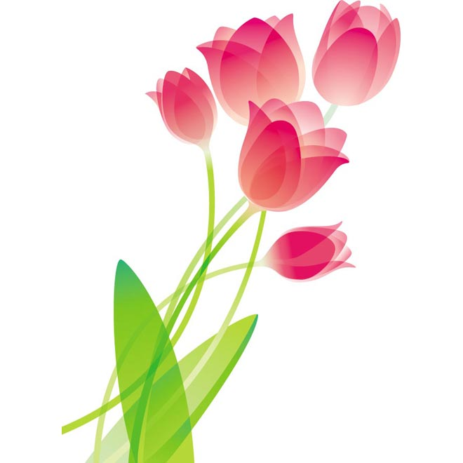 Free pictures of tulips flowers download Free clip art tulips - ClipartFox download