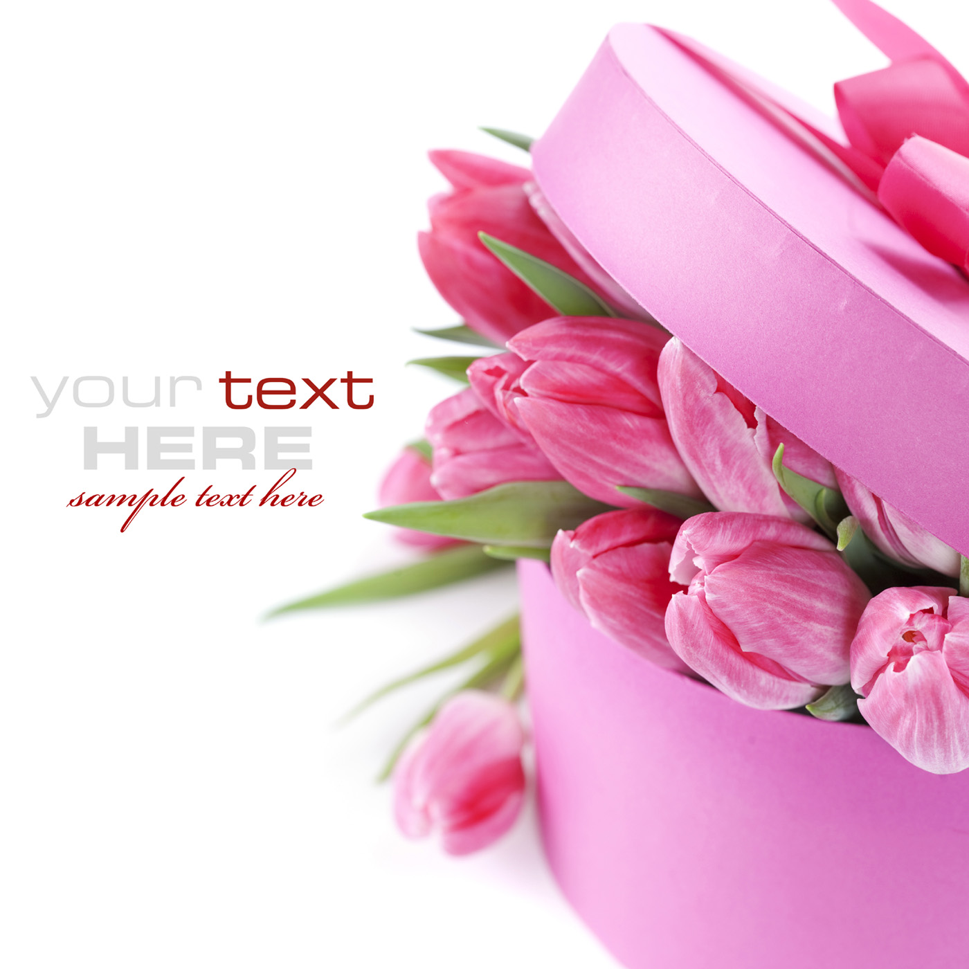 Free pictures of tulips flowers clip free Red and yellow tulips 52302 - Tulip - Flowers clip free