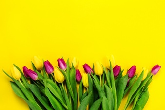 Free pictures of yellow flowers png free library Yellow Flower Vectors, Photos and PSD files | Free Download png free library