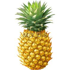 Free pineapple clipart picture royalty free download Pineapple Clip Art Free | Clipart Panda - Free Clipart Images picture royalty free download