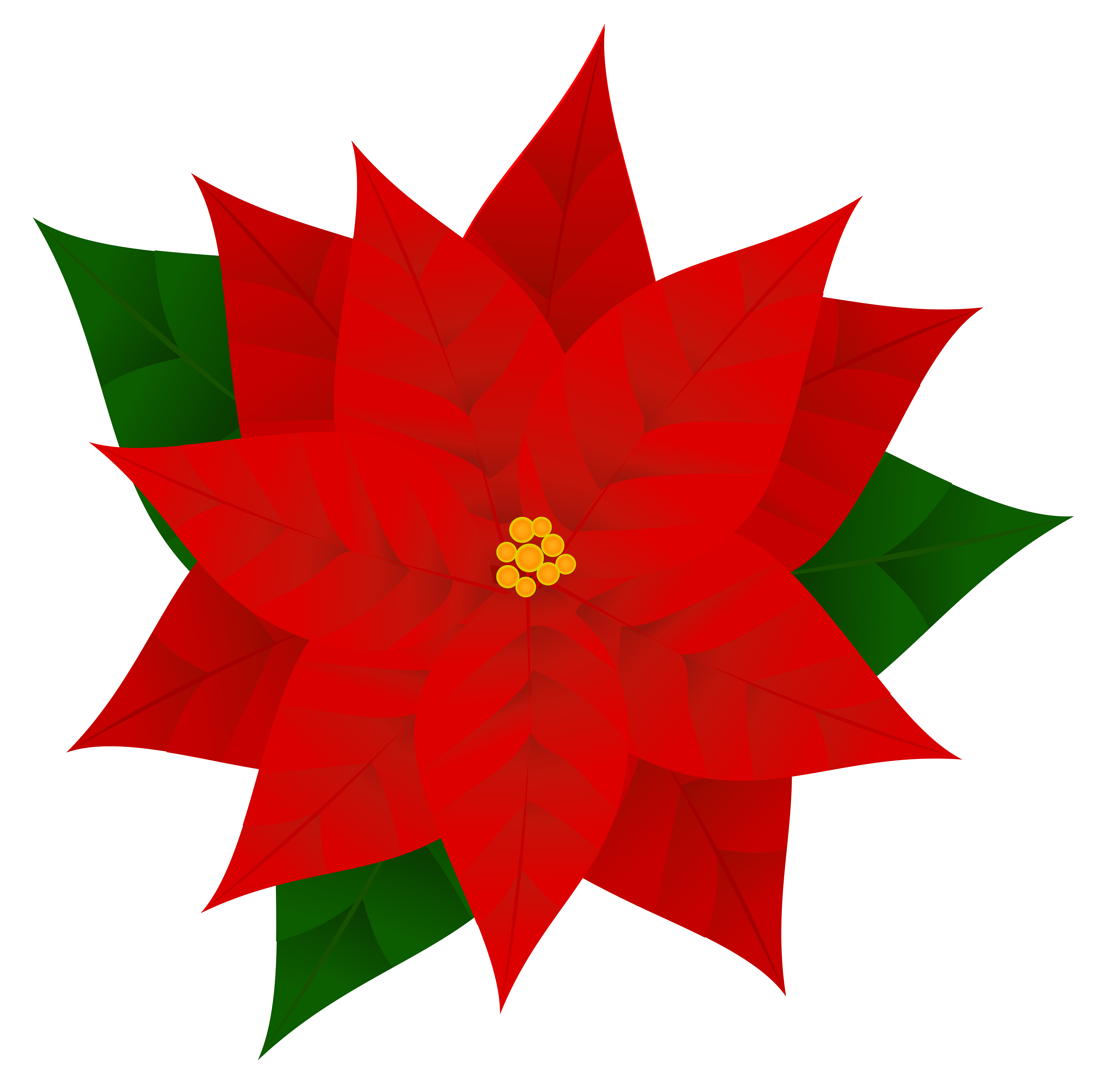 Png image gallery yopriceville. Free poinsettia clipart images