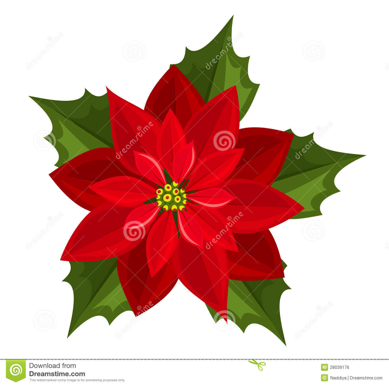 Free poinsettia clipart images.  clipartlook