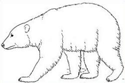 Free polar bear clipart black and white image black and white library Free Polar Bear Clipart Black And White, Download Free Clip Art ... image black and white library