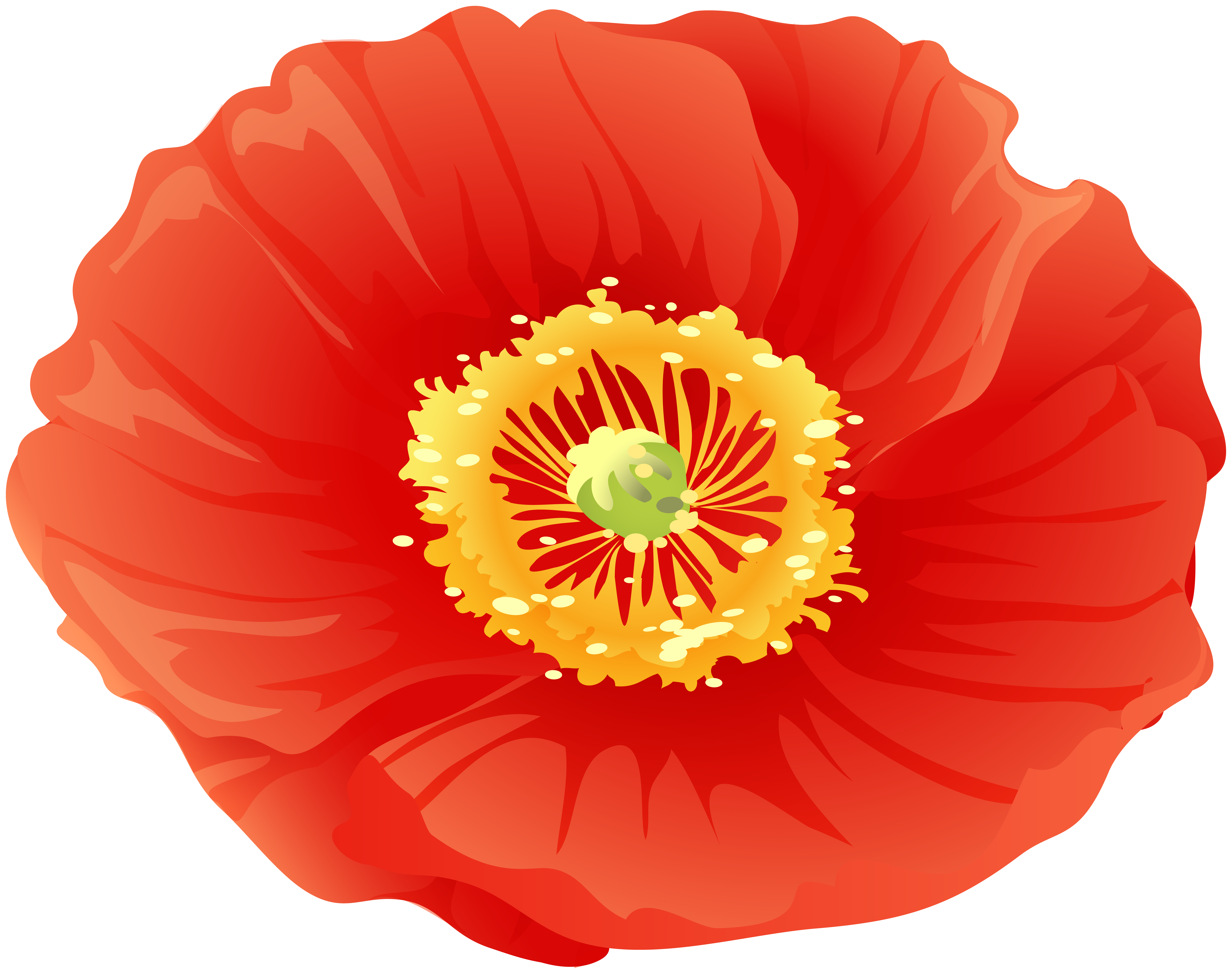 Free poppy flower clipart clipart royalty free library Red Poppy Flower Clip Art | Gallery Yopriceville - High-Quality ... clipart royalty free library