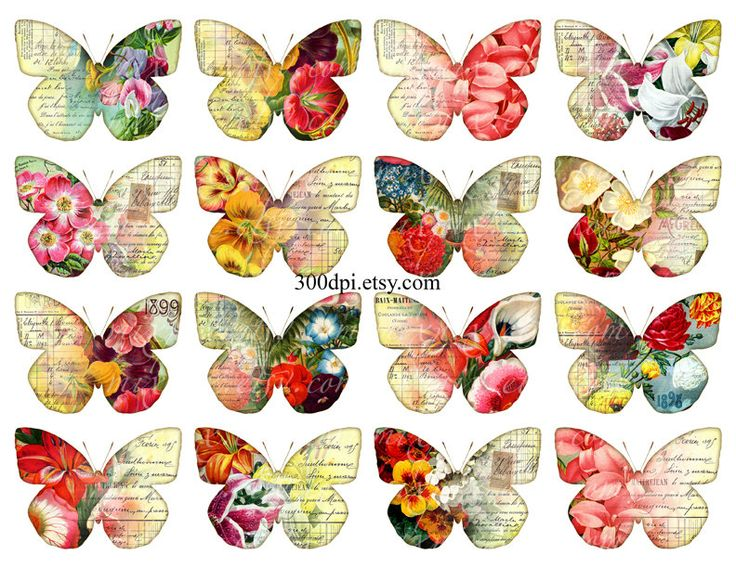 Free printable butterfly clipart svg free library 17 Best images about birds, dragonflies, butterflies printables 3 ... svg free library