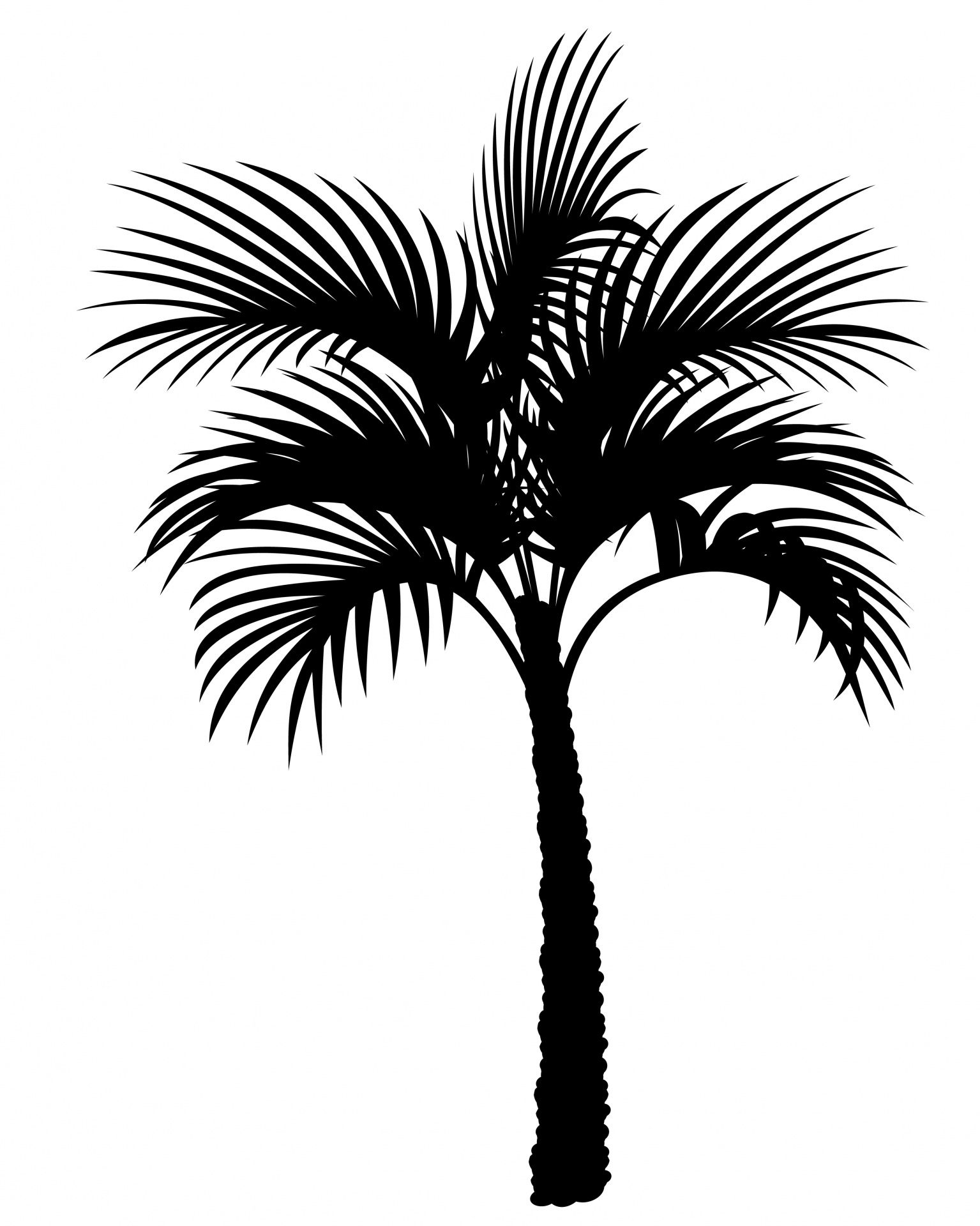 Free printable clipart of old world palm trees jpg library download Palm Tree Silhouette Clipart | Palmtrees in 2019 | Palm tree ... jpg library download