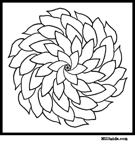 Free printable flowers pictures royalty free stock Free Printable Flower Coloring Pages Kids Coloring Pages Flowers ... royalty free stock