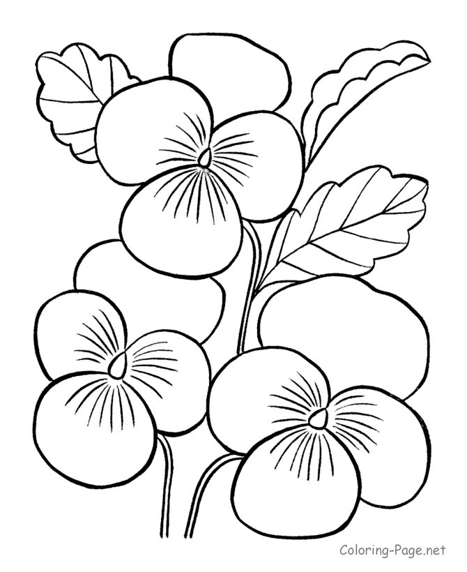 Free printable images of flowers svg black and white download 17 Best ideas about Flower Coloring Pages on Pinterest | Coloring ... svg black and white download