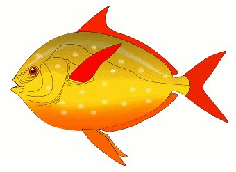 Free public domain commercial use fish with letter f clipart banner freeuse stock Free Fish Images Free, Download Free Clip Art, Free Clip Art on ... banner freeuse stock