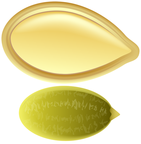 Free pumpkin seed clipart png freeuse stock Pumpkin Seed PNG Clip Art | Gallery Yopriceville - High-Quality ... png freeuse stock