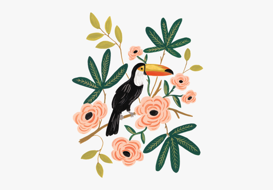 Free rifle paper co clipart banner black and white Toucan - Rifle Paper Co Flowers #254472 - Free Cliparts on ClipartWiki banner black and white