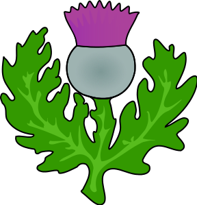 Thistle clipart scotland png black and white library Free Thistle Cliparts, Download Free Clip Art, Free Clip Art on ... png black and white library