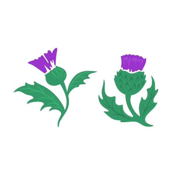 Thistle clipart free svg library stock Pin by CuttableDesigns on Cities and States | Scottish thistle ... svg library stock