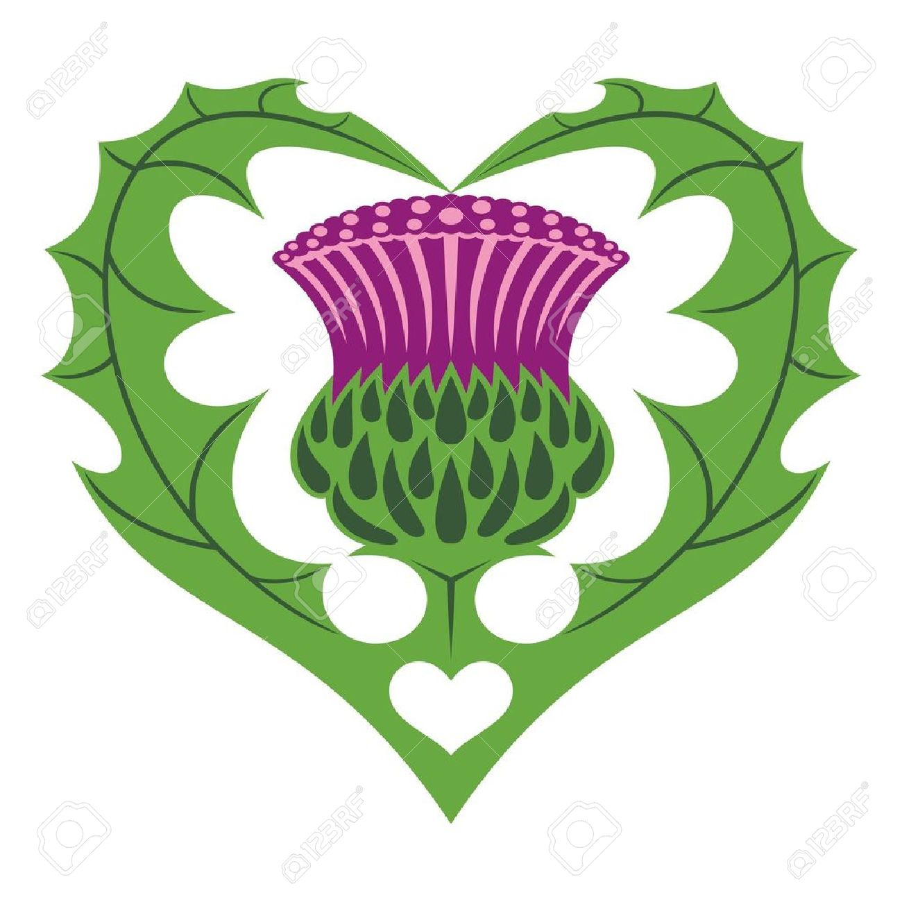 Thistle clipart scotland vector transparent library Thistle Clipart | Free download best Thistle Clipart on ClipArtMag.com vector transparent library