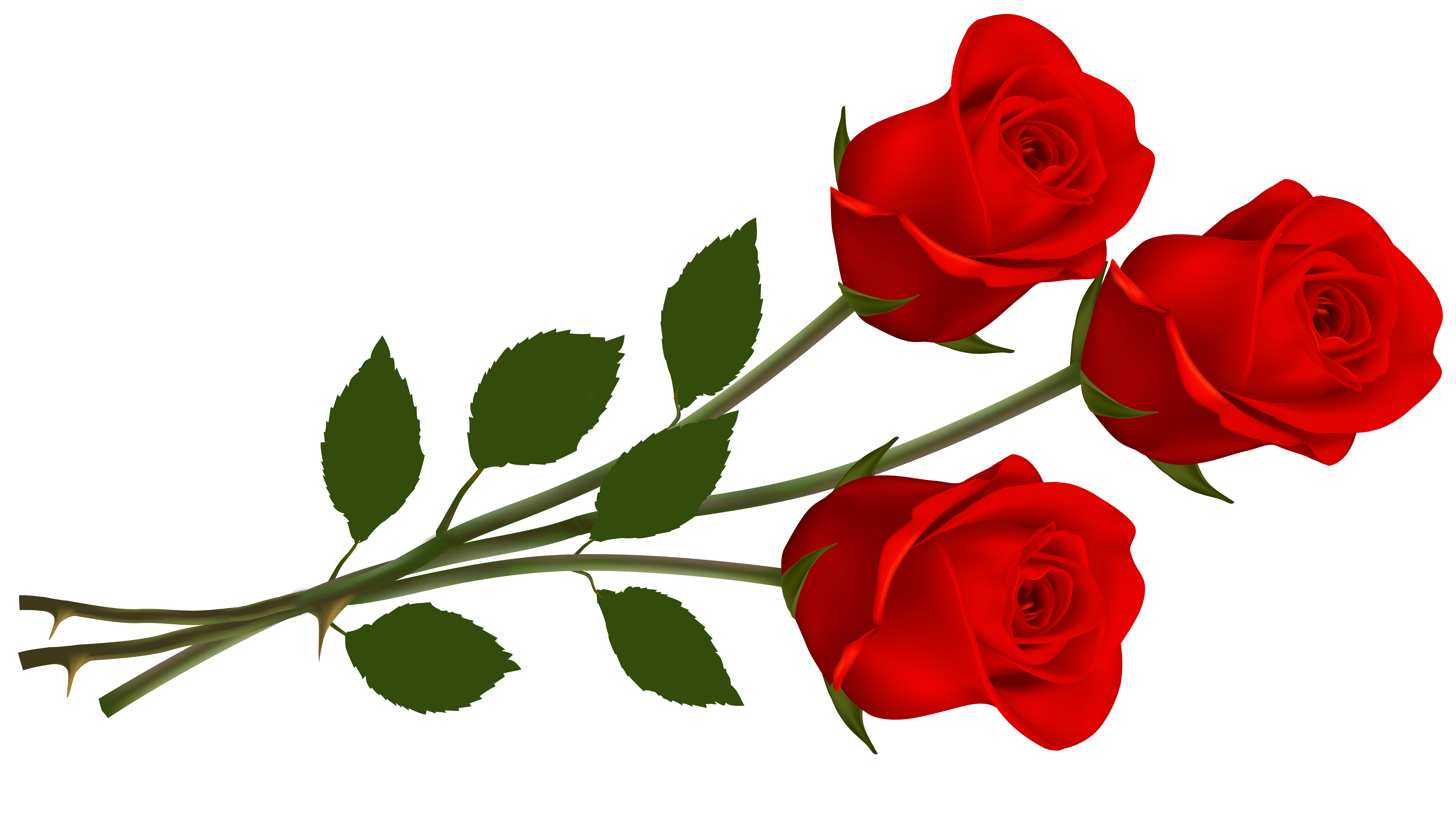 Clip Art Red Rose | Roses | Red roses, Single red rose, Rose clipart graphic royalty free