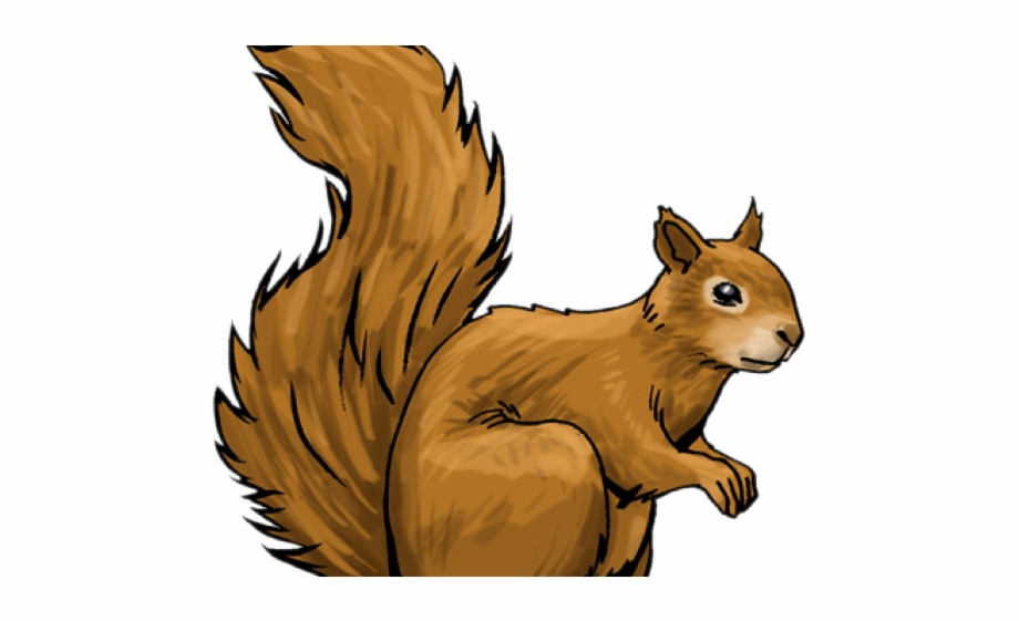 Free squirrel clipart images png transparent stock Red Squirrel Clipart Woodland - Transparent Squirrel Clip Art ... png transparent stock