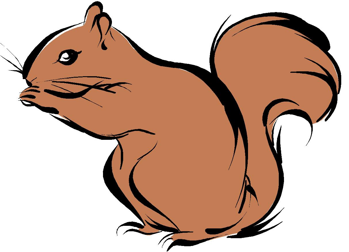 Squirrel clipart public domain clip free library Best Squirrel Clipart #9570 - Clipartion.com clip free library