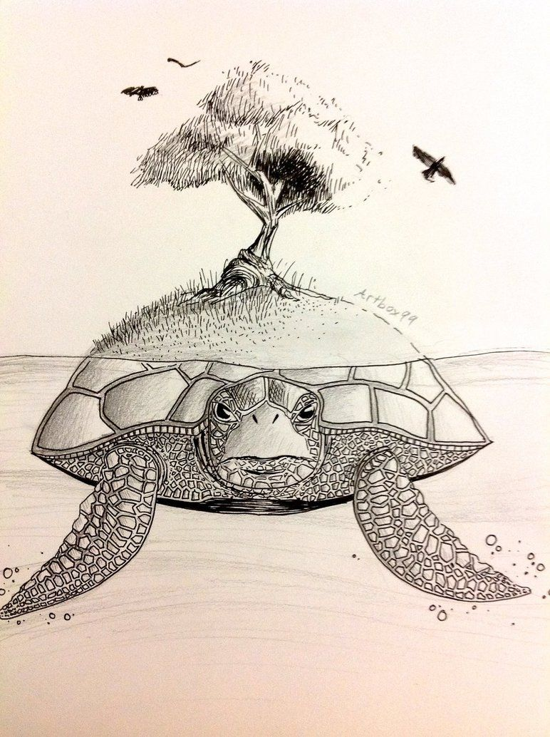 Free stock photos turtle island earth clipart