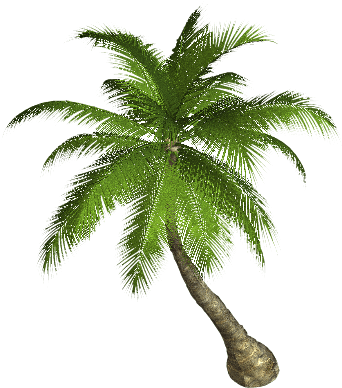 Free sun palm clipart svg free download Palm Tree Clipart Real#3763075 svg free download