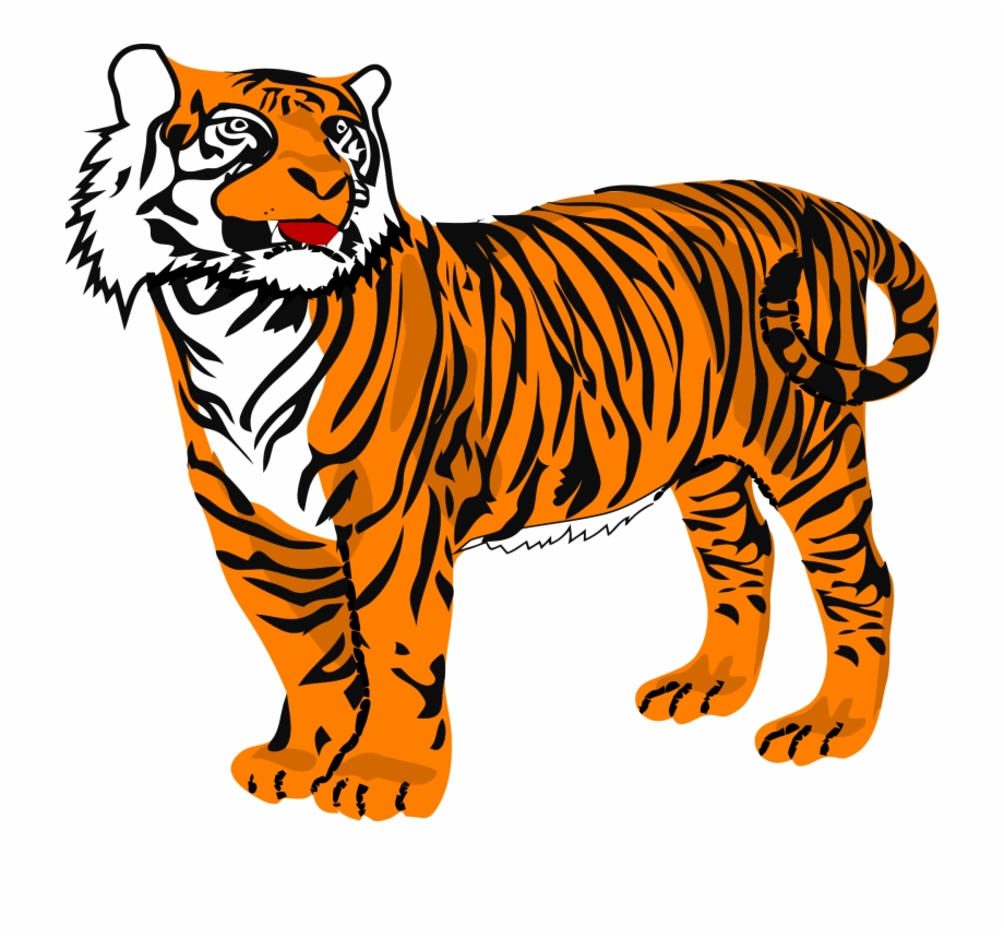 Tiger png clipart clip Clipart Picture Of A Tiger - Tiger Clipart Free PNG Images & Clipart ... clip