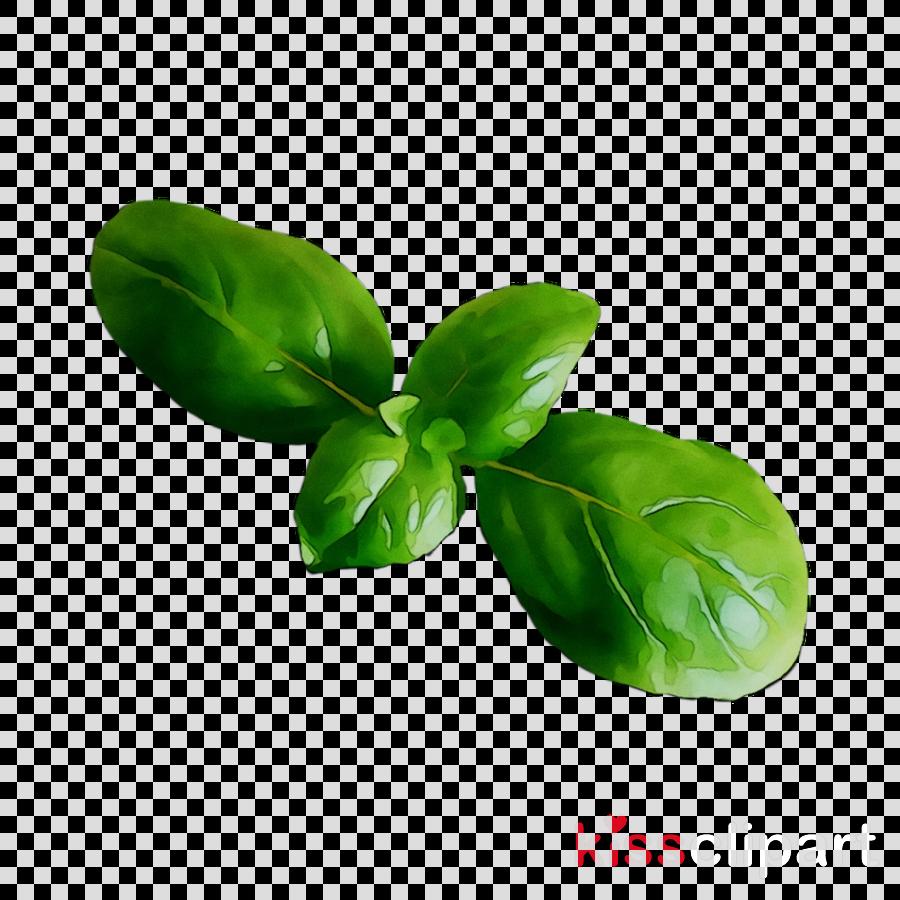 Free transparent lemon stem leaf clipart png royalty free library Lemon Flower clipart - Leaf, Plant, Flower, transparent clip art png royalty free library