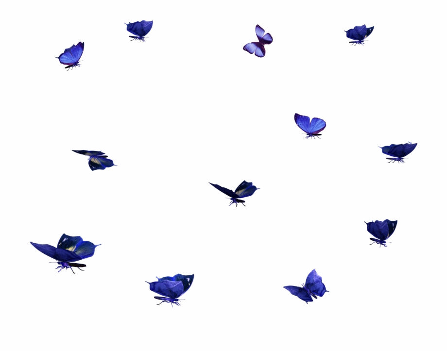 Free butterfly overlay clipart clip art black and white library Transparent Blur Layer Photoshop - Butterfly Overlay Free Free PNG ... clip art black and white library