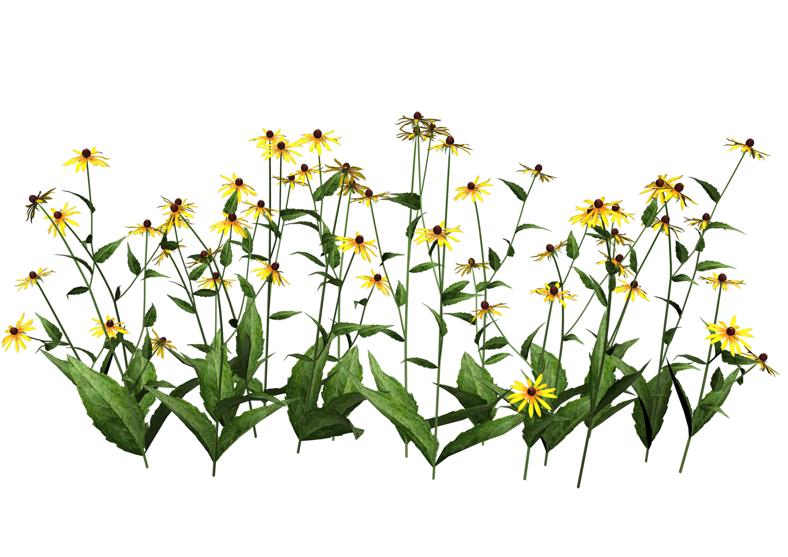 Free transparent png clipart picture royalty free Download-Plants-Transparent - Free Transparent PNG Images, Icons and ... picture royalty free