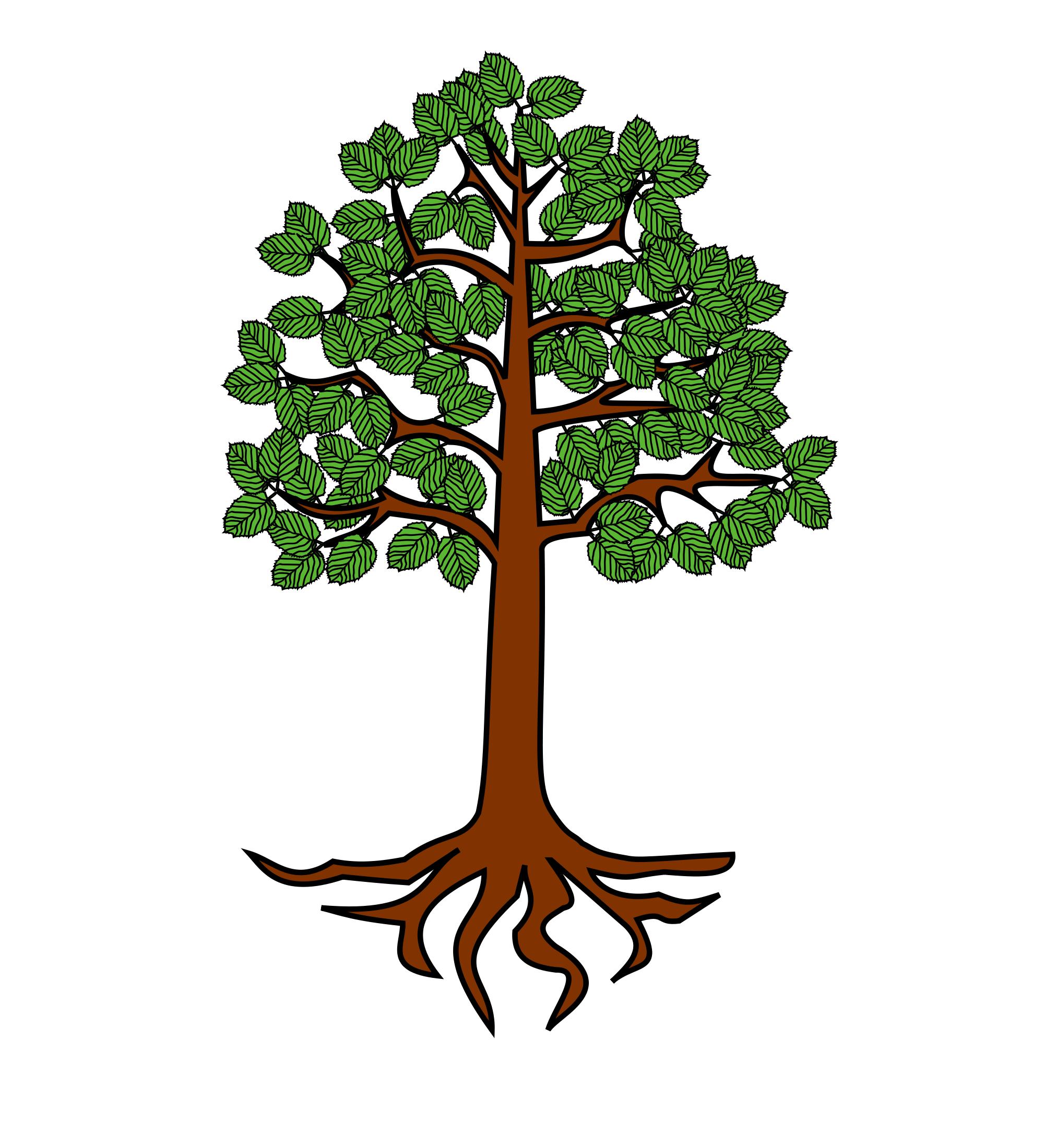 Free tree with roots clipart freeuse stock 28+ Collection of Tree With Roots Clipart Png | High quality, free ... freeuse stock