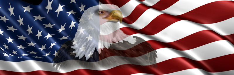 Free us flag clipart clip art black and white download American Flag With Eagle Clipart - Clipart Kid clip art black and white download