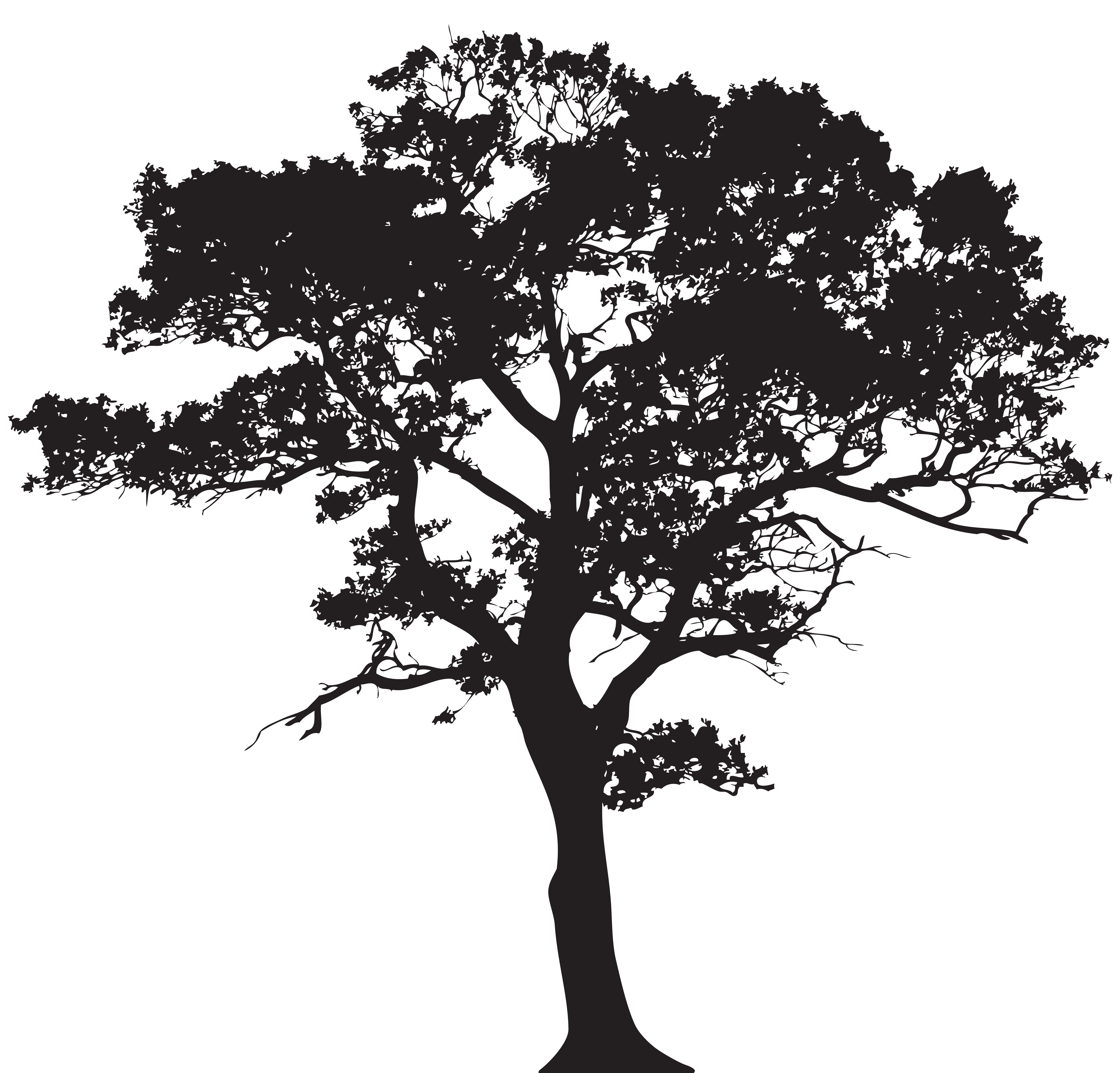 Free vector tree clipart clip black and white stock silhouette tree clipart free vector tree silhouettes clip art 111545 ... clip black and white stock