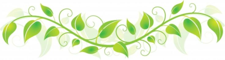 Vine clipart images clipart library stock Free Vine Cliparts, Download Free Clip Art, Free Clip Art on Clipart ... clipart library stock