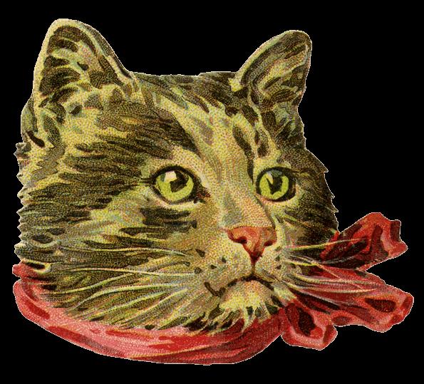 Free vintage cat clipart