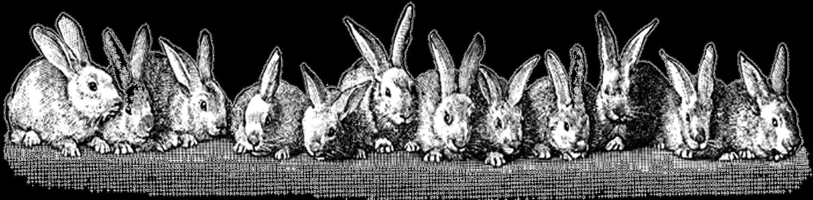 Free Easter Printable & Vintage Clip Art – Maggie Holmes Design svg freeuse download