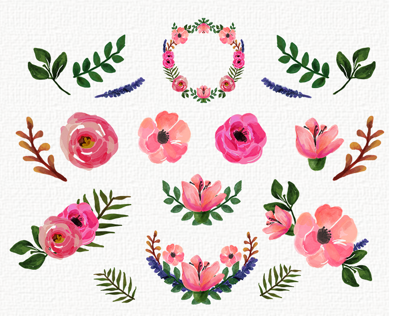 Free watercolor elements flowers berries leaves clipart png png transparent download WATERCOLOUR FLORAL clip art collection 14 Elements PNG on Behance png transparent download