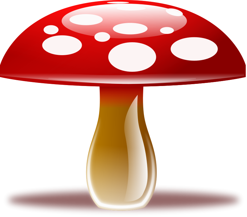 Free whimsical black and white mushrooms png free clipart clipart transparent download mushroom Clipart free | Fairies Gnomes Elves Unicorns Tinkerbell ... clipart transparent download